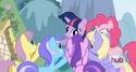 Pony Crowd 2