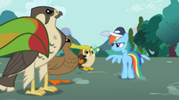 "Rainbow Dash ""You'd better"" S2E07"