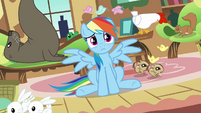 Rainbow Dash -it's up to me to stop them- S03E13