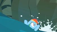Rainbow Dash doomed S02E08
