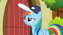 Rainbow Dash knock on Fluttershy's door S2E22