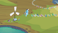 Rainbow Dash telling the pegasi S2E22.png