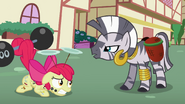 S02E06 Zecora mówi do Apple Bloom