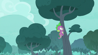 Spike quickly climbing into a tree S8E11