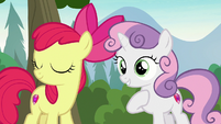 Apple Bloom agreeing with Sweetie Belle S7E21