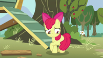 Apple Bloom uncomfortable and hiding her flank S5E4