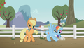 Applejack with Rainbow Dash S01E03.png