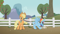 Applejack with Rainbow Dash S01E03