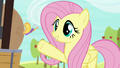 "Fluttershy ""freedom to come and go"" S7E5.png"