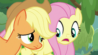 Fluttershy -ask yes-or-no questions- S8E23