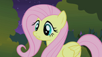 Fluttershy blocks the CMC's path S1E17