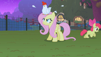 Fluttershy has had enough S1E17