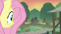 Fluttershy sees a familiar tree in the distance S7E20