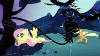 Fluttershy teases the vine S4E02