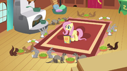 Fluttershy watching animals eat S2E19