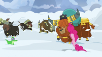 Pinkie Pie starts drilling through the snow S7E11