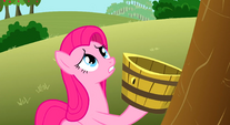 Pinkie watches the tree sadly S3E13