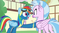 "Rainbow Dash ""right now!"" S9E3"