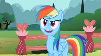 Rainbow Dash 'Can't settle for less' S2E07
