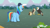 Rainbow Dash facing the flyers S2E07