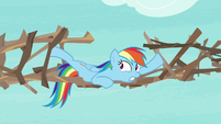 Rainbow Dash securing her bridge supports S8E9