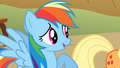 Rainbow Dash talks to Applejack S1E13.png