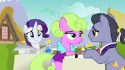 Rarity looks heartbroken behind brunch ponies S7E14