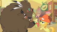 S01E21 Kucyki walczą z bizonami