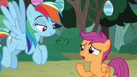 "Scootaloo ""after the last camping trip"" S7E16"