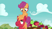 Scootaloo --Not even a tinge of dissatisfaction--- S6E4
