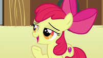 "Apple Bloom ""the most important thing I learned"" S6E23"