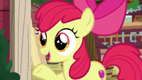 "Apple Bloom ""why don't we go here instead?"" S8E12"