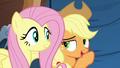 Applejack whispering to Fluttershy S6E20.png