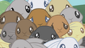 Bunnies huddled together S1E04.png