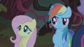 Fluttershy and Rainbow Dash S01E02.png