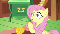Fluttershy comes up with an idea S6E17