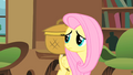 Fluttershy with her basket S01E22.png