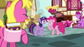 Pinkie Pie's fans laughing once more S7E14.png