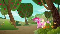 Pinkie Pie and Fluttershy walking home S6E18