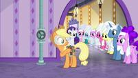 Ponies watching Applejack work S6E10