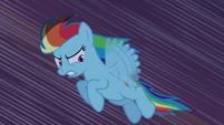 Rainbow Dash voando pelo castelo T4E03