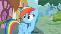 Rainbow Dash what was that S2E8