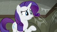 Rarity mentions --strong-smelling raccoons-- S6E9