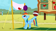 S01E13 Rainbow Dash panuje nad dwoma piłkami