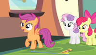 Scootaloo -no shot at getting gold either- S4E24