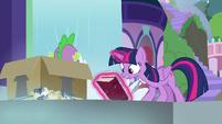 "Twilight ""belongs to the Canterlot Library!"" S9E5"