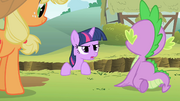 Twilight -two coincidences in a row- S1E15