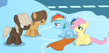 20140208051333!Filly Rainbow defending Fluttershy S1E23