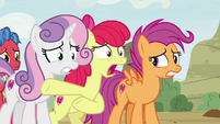 "Apple Bloom ""then we met these foals"" S9E22"