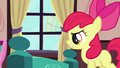 Apple Bloom 'We need' S3E4.png
